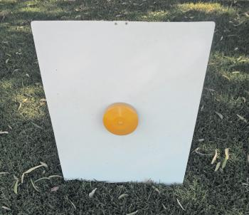 Targets are simple and cost effective to make.