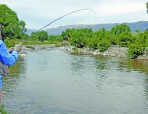 Denise Kampe lays into a fish on the upper Twizel River.