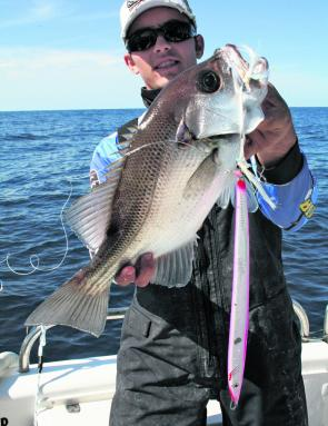 Jigging with fast or slow metal also accounts for its fair share of pearl perch.