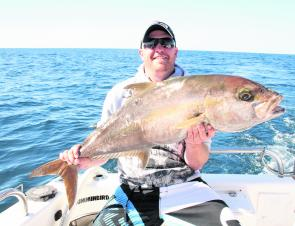 Amberjack often frequent the same grounds as the pearl perch so be ready for some 'pearlies' that pull like tractors. Live-bait rigs should be stronger for this reason.