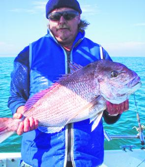 November is snapper time on the Bellarine.