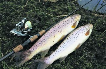 Land-based fishing is a very viable option early on in the season.