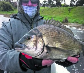 Quality bream are expected to fire this October.