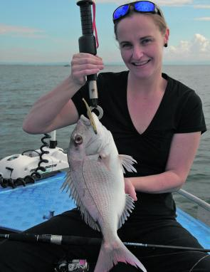 The bay island margins will hold good numbers of pain-sized snapper due to increased water clarity.