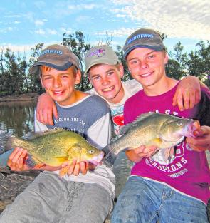 Jarrah Turner, John Cassidy and Jock Mackenzie caught these and several other good-sized golden perch fishing from the bank on the Wakool River.