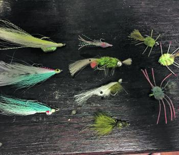 A small selection of flies including small shrimp, crab and baitfish patterns.