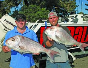 Some quality snapper taken off Port Fairy recently.