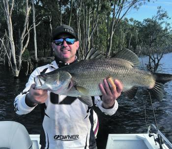 Over the course of a week, a few anglers from Broken Hill boated 42 barra.