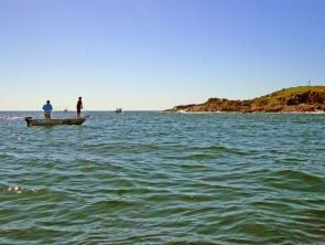 Chasing kings at Pig Island, just off the Harbour entrance, is a popular pastime for boats of all sizes.