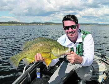 Craig Hanlon showing these golden perch can keep you well entertained even if the cod aren't co-operating.