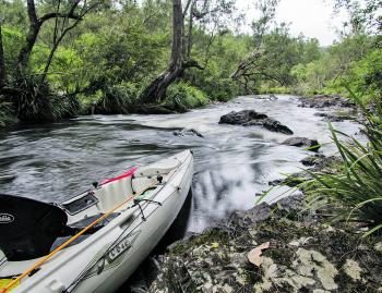 Go for the 'get away from it all' experience on the Nymboida River, part of the 195km long Clarence Kayak and Canoe Trail.