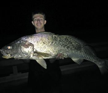 The author's 114cm PB black jewfish caught land-based around some heavy structure – what a fish!