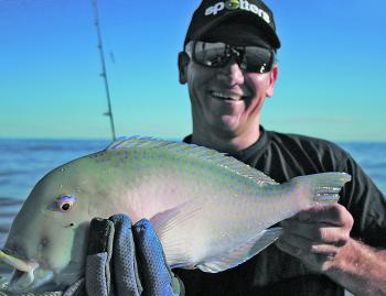 Tuskfish are a prime target this month and go particularly well on the table.