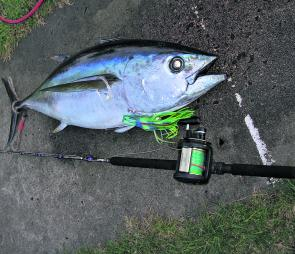 All sorts of game fish will mix in at this time of year, like this big-eye tuna.