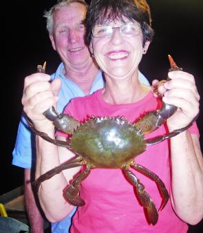 Tasty mud crabs can be found throughout the Indo-Pacific and in Australia south to about the Victorian border.
