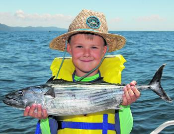 There are stacks of bonito about like this, and they are great fun for the kids.