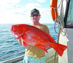 This scarlet sea perch wash caught recently about 2-miles offshore.