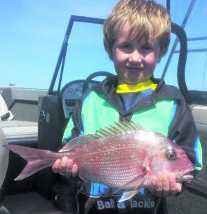 Ryder caught this nice little snapper while chasing a few whiting at Port Albert. It went well on 4lb line and bent the nibble tip over good and proper.