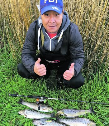 Tom Nguyen bagged out landing five brown trout casting a Pontoon 21 green and yellow lure.