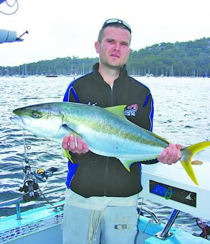 Mike with a lovely kingfish caught among the moorings on Pittwater.