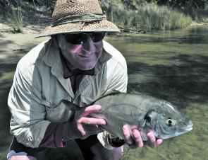 Whether you are off the Wharf, rocks or in the estuaries, silver trevally are a regular catch.