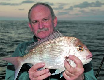 There are plenty of pan-sized snapper over the inshore reefs this month.
