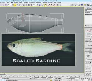 The software enables you to create an exact profile of any baitfish. Above the Baitfish image you can see the rendered 3D model.