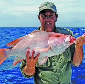 Nannygai are a staple in offshore catches.