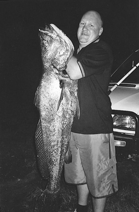 Although he couldn't find anyone to go fishing with him that day, Rob Stokes of Karuah caught this 30kg jewfish under the local bridge. He proudly stuck it to everyone in town who had told him there were no fish around.