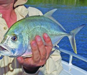 Trevally are prime targets for those who enjoy casting poppers. They will take livebaits also.