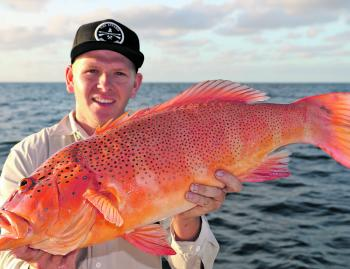 Logan Cummings bagged this solid 6kg coral trout on a soft plastic on a recent trip with the author.