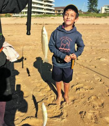 The author's grandnephew Luka, six years old, caught these beautiful whiting.