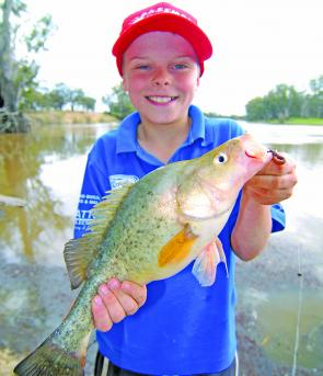 Jock Mackenzie with a decent golden perch caught in the backwaters of the Murray on bait.