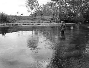 With the Goulburn's flow reducing there'll be some terrific low water fishing to be had in April.