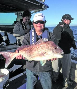By December the snapper have made their way into the bay and should be really on the chew.