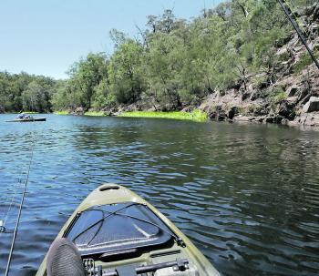 Brogo can be fished from a variety of kayaks and the scenery is beautiful.