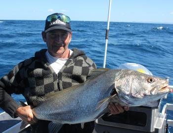 Ross nailed this mulloway from a local wreck.