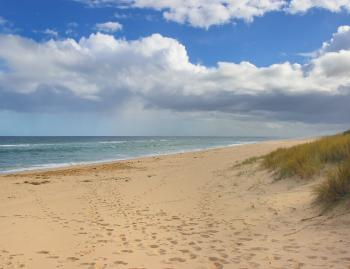 The expansive beaches around Lakes Entrance offer plenty of space for anglers to have a go.
