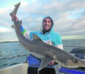 Tristian Cincotta displays his personal best gummy shark caught recently.