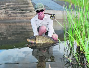 Carp offer some great angling opportunity on bait, lure, and fly. Big ones like this will test your tackle to the limit.
