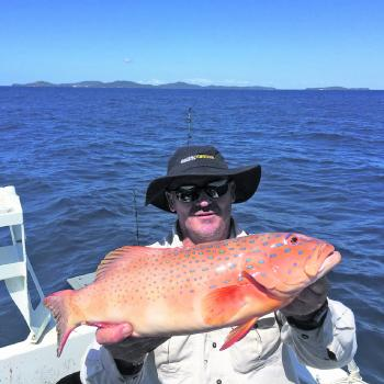 Mark Thompson caught this coral trout off the Capricorn Coast