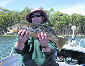 Tassie is famous for its summer fly fishing and they don't come much better than this perfectly coloured brown trout.