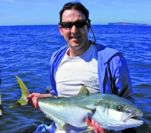 Kingfish like this will become more common along the Barrenjoey coast this month.