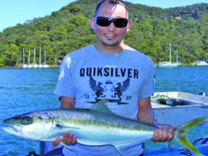 As usual for Pittwater kingfish, this one, caught on the western side, took a live downrigged squid.