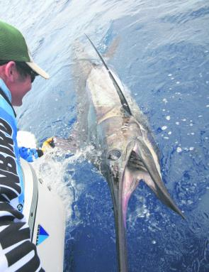 It has been a great season on the blue marlin and we can expect more of the same this month.
