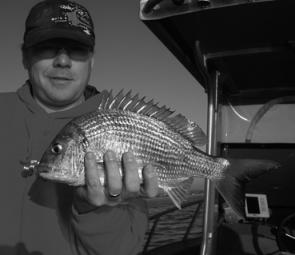 Good bream also hunt the shallows early of a morning but retire to deeper water as the sun gains intensity.