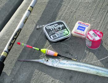 Garfish are abundant and are commonly caught from the piers early morning and late evening.