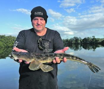 John Kelly found that using bigger lures for mulloway will often get better than average flathead.