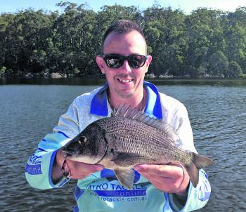 The author managed this solid black bream a little over the mid 30s on a shallow dive Pro Lure S36 hardbodied lure.