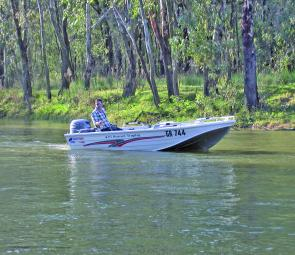 A perfect cob boat! Dave Dryden trolls a smaller cod water, a creek which runs out of and then back into the Murray River near Cobram.